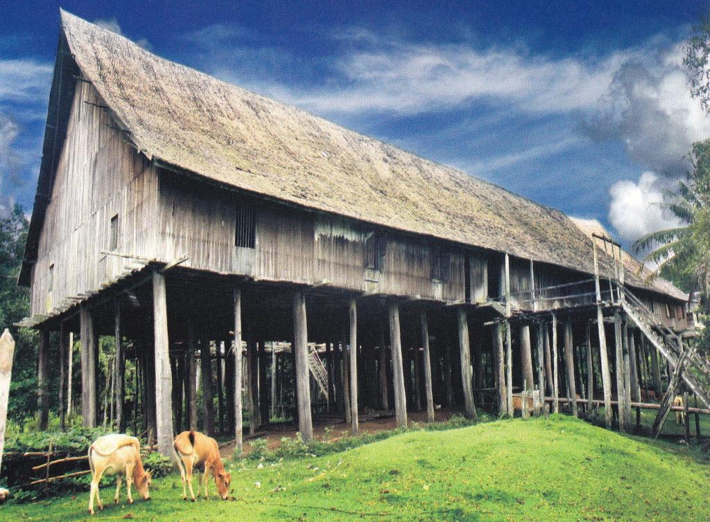Explore Heart of Borneo